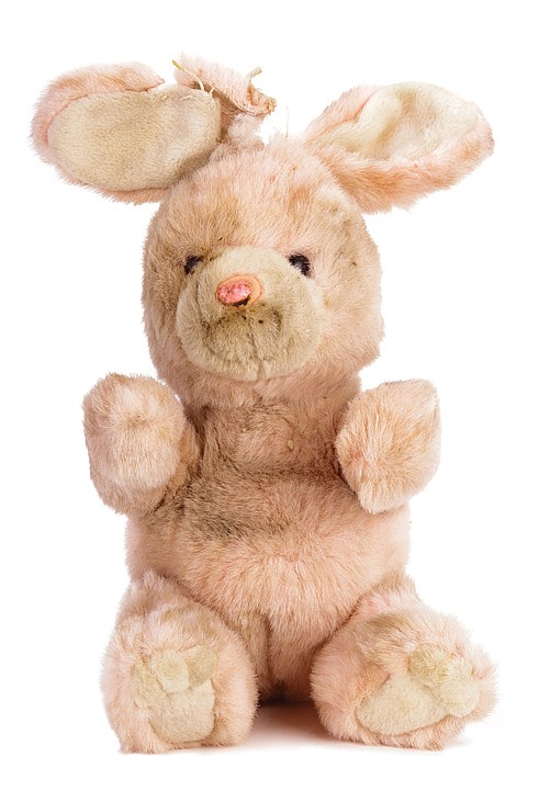 Con Air bunny