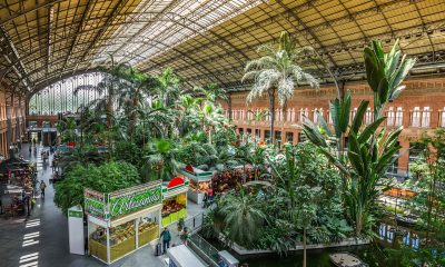 Madrid Atocha pályaudvar, miután a vágányok helyett trópusi kert került a pályaudvar csarnokába.